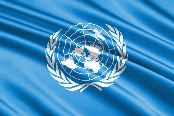 Model United Nations for students in the Hague and Singapore