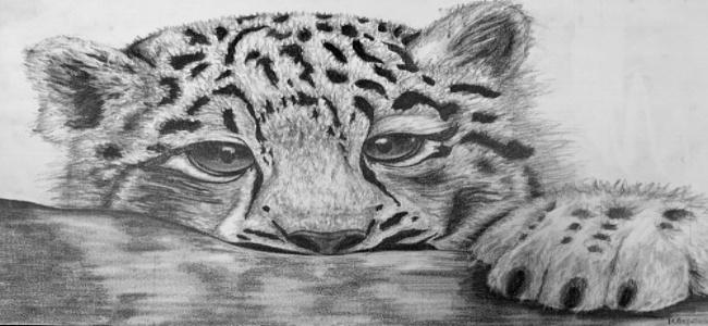 Mara art work 1-506711-edited-574254-edited.jpg
