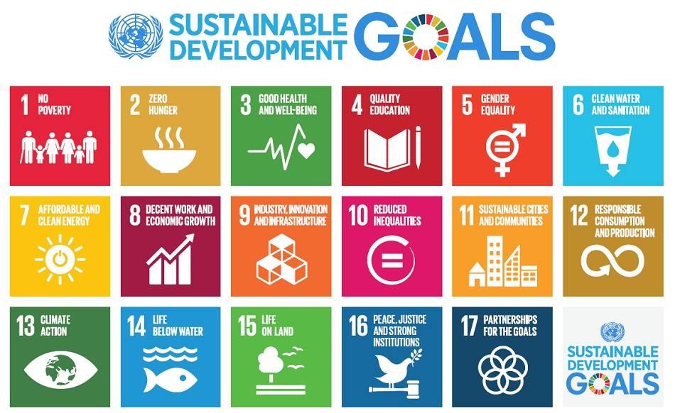 17 Sustainable Development Goals Project Challenge