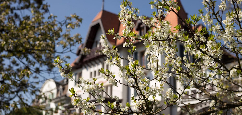 Brillantmont-International-School-main-Chateau.jpg