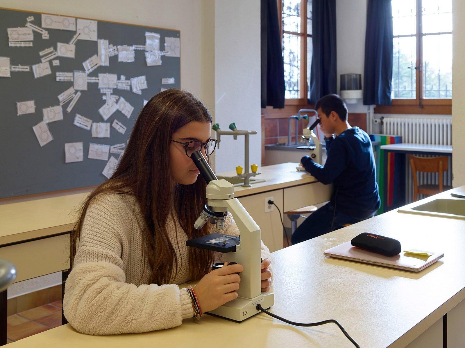 Learning at Swiss boarding school