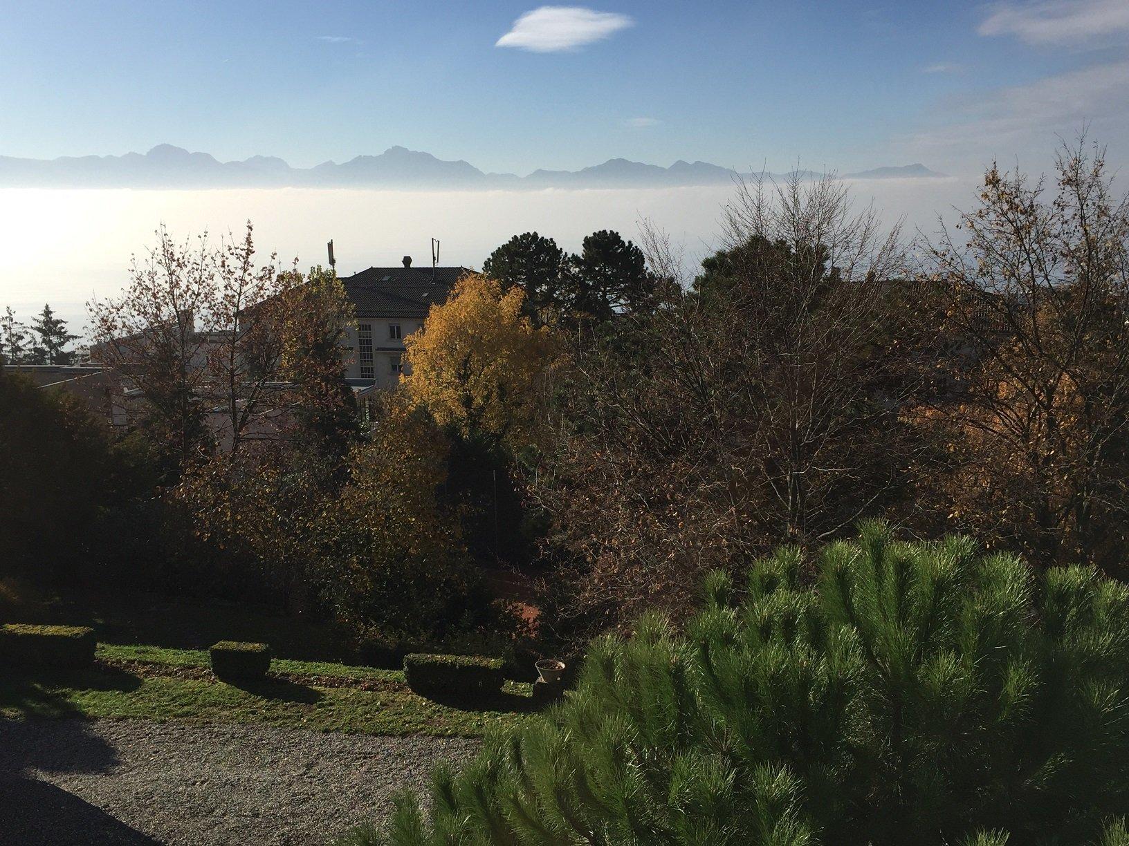 View_Autumn.jpg
